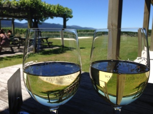 wine, vineyard, new zealand, honey moon