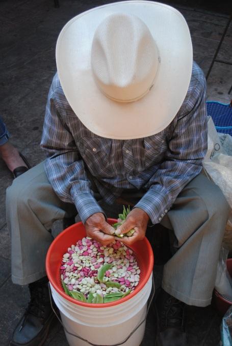 beans_culinary tour_mexico_ana garcia_