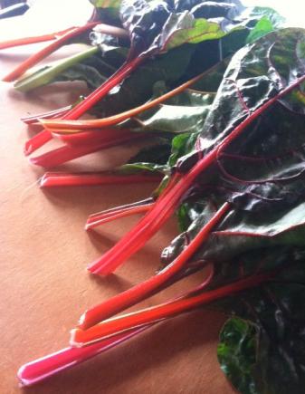 swiss chard_local_organic_farmed_farmer_vegetable
