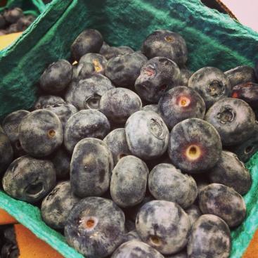 blueberries_fresh_local_fruit