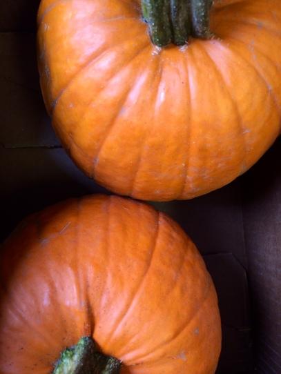 pumpkin_fall_autumn_cooking tips
