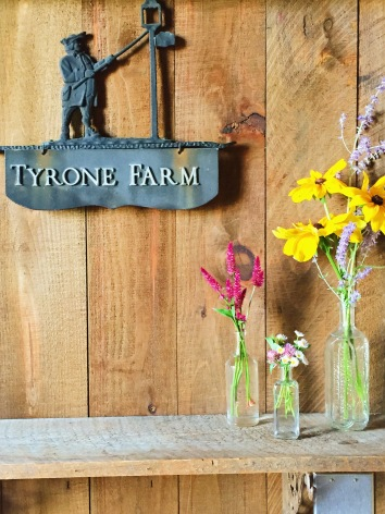 tyrone farm_wedding venue_farm wedding_connecticut_rhode island weddings